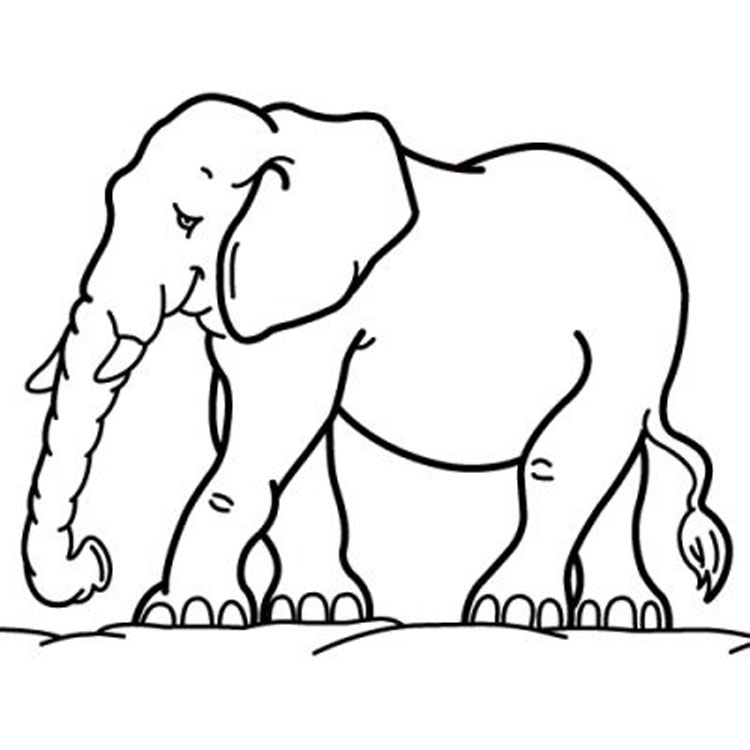 Animals Coloring Pages 9