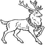 Deer Coloring Pages 6
